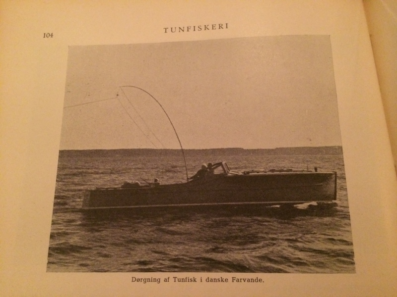 Denmark tuna fishing 4