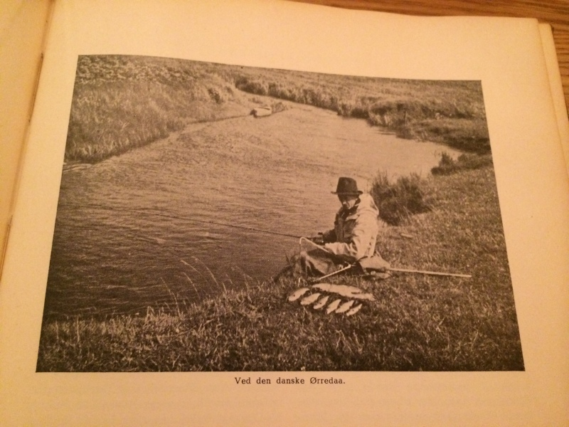 Trout fishing in a Danish stream.