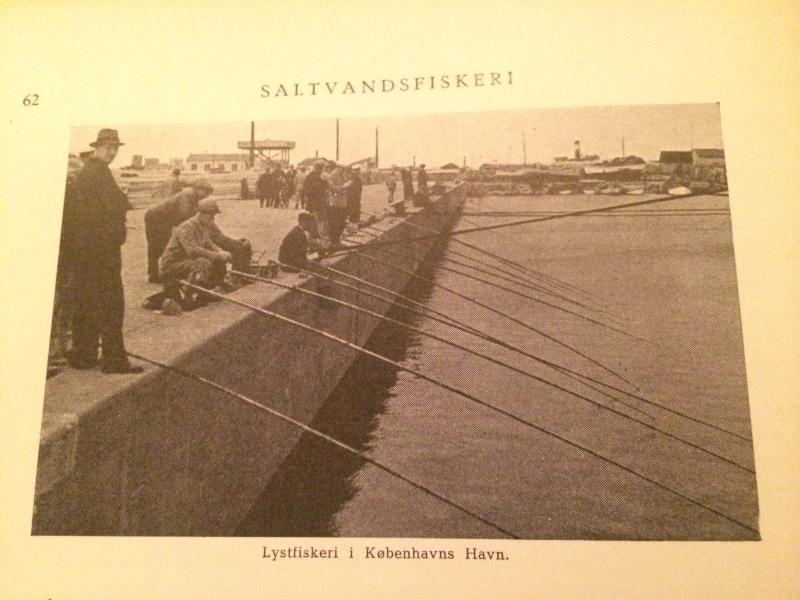 Fishing in Københavns Havn