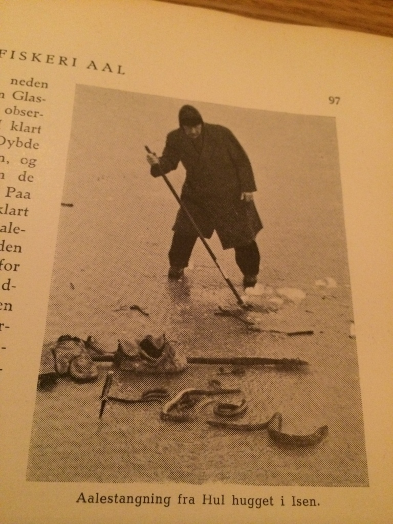 Catching eels from a hole in the ice.