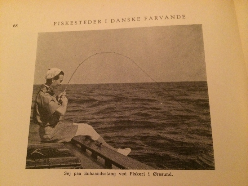 Polack fishing with light rod in Øresund.