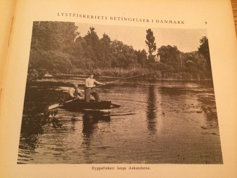 """Dap"" fishing in a Danish lake."