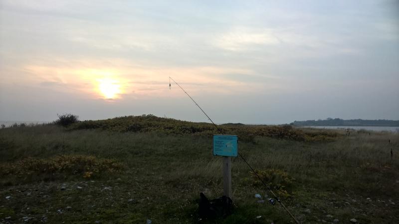 Avernakø - Sunset