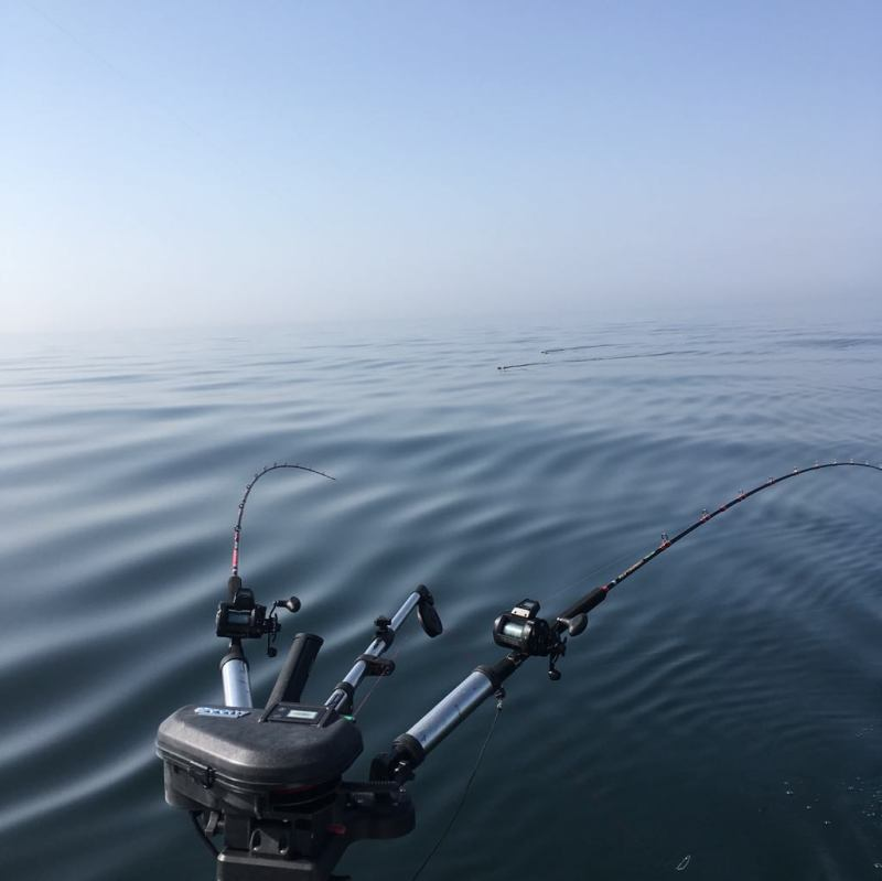 Svenstrup sportsfishing trolling