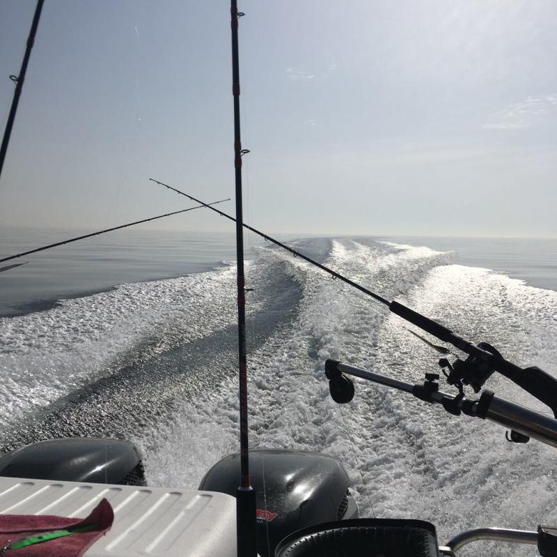 Svenstrup sportfishing trolling