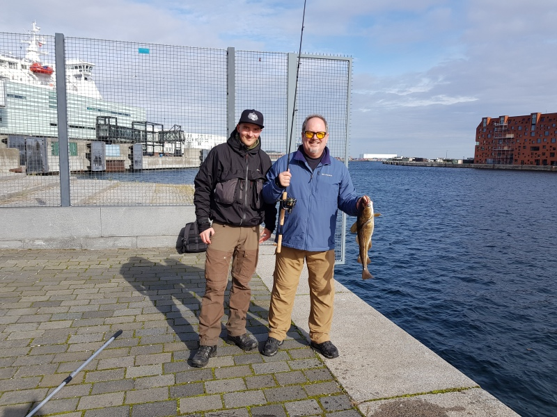 Harbour fishing Nordhavn 1